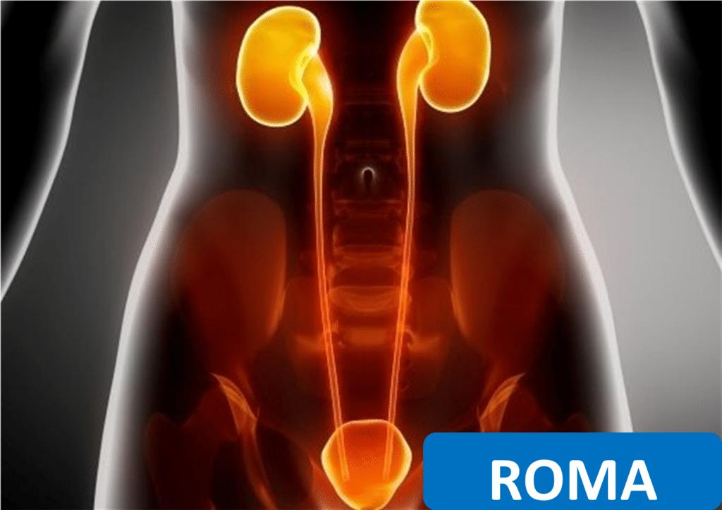riabilitazione del pavimento pelvico nell'incontinenza urinaria femminile e maschile