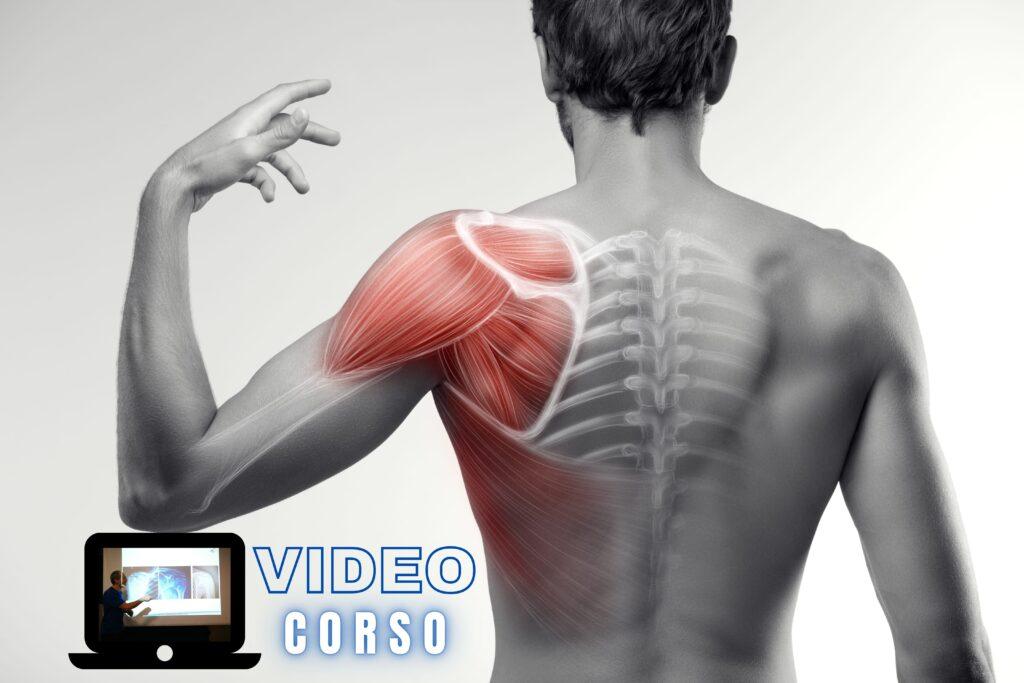 corsi ecm per fisioterapisti la spalla video corso